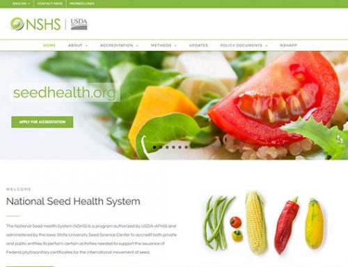 NSHS Launches New Website