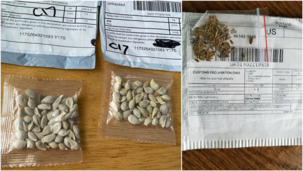 USDA Investigates Packages of Unsolicited Seeds from China